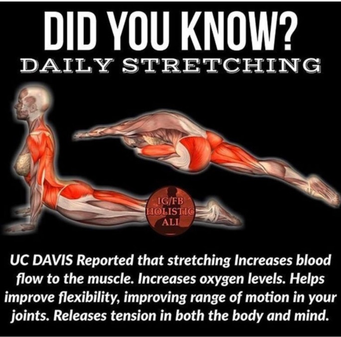 Stretching Did You Know